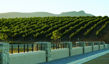 benguela-cove-botriver-wines-overberg-south-africa-wine-02