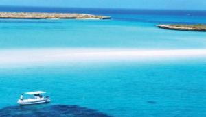 Djibouti-boat-web