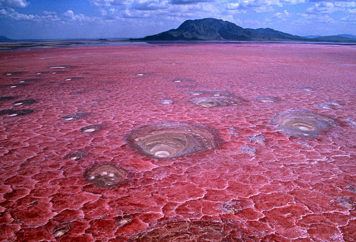 Lake-Natron-Killer-Lake-That-Petrifies-Animals-1