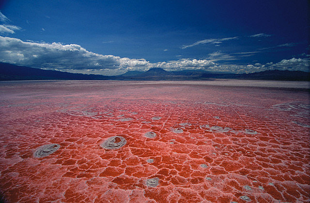 Lake-Natron1