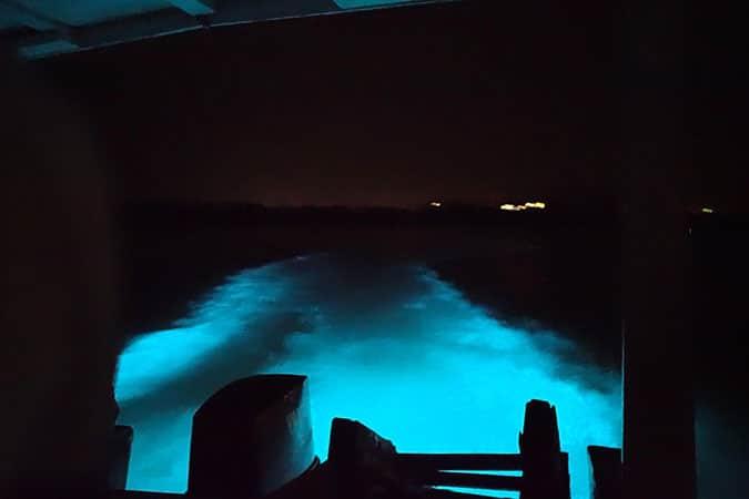 glistening-waters-luminous-lagoon-3