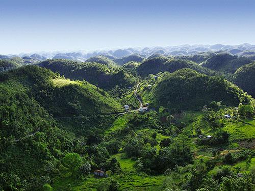 jamaica-blue-mountains1