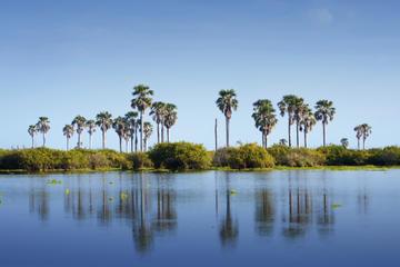 lago-enriquillo-and-isla-cabritos-national-park-day-trip-from-santo-in-santo-domingo-181362