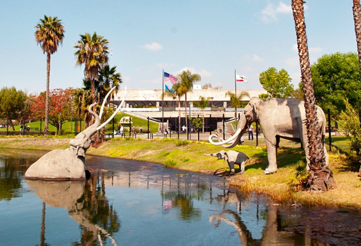 california-los-angeles-page-museum-of-la-brea-discoveries
