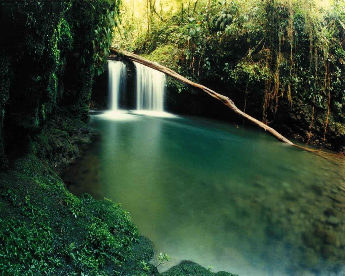 Braulio-Carrillo-National-Park.jpg