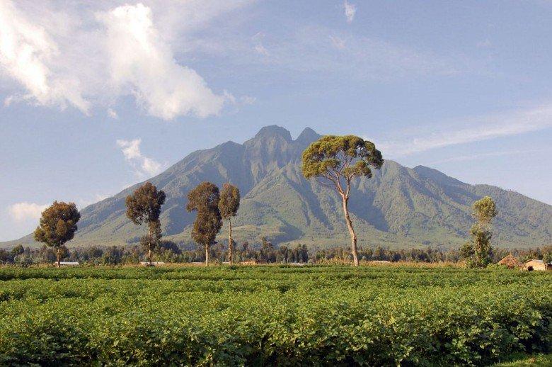 Virunga-Mountains-780x518