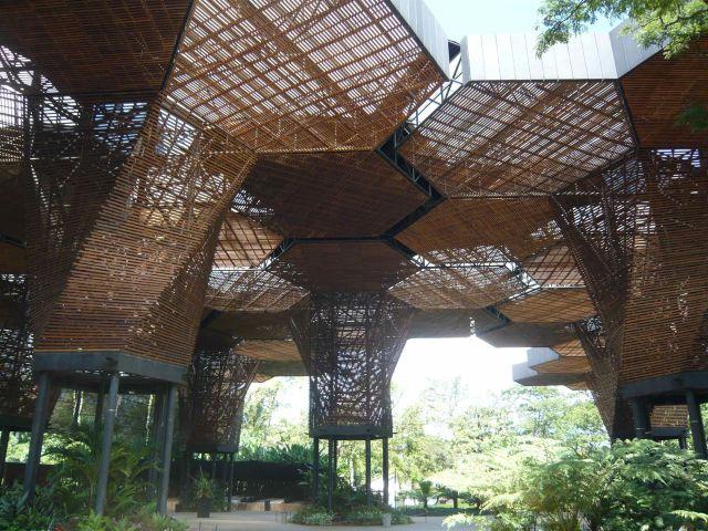 1280px-Orquideorama_Jardin_Botanico_4